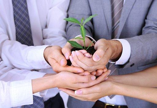Proekologiczna postawa firm